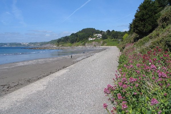 view of Seaton Beach from the sea wall